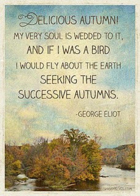 follow autumn